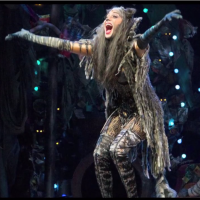 Nicole Scherzinger: From Pussycat Dolls to Grizabella and Other Film-Inspired Musicals